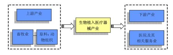 2013年植入医疗器械行业产业链概述